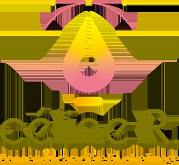 Céline Randonnet